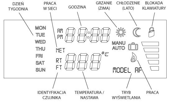 IB-TRON 1000